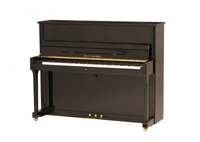 Wilh. Steinberg P-118 Black Upright